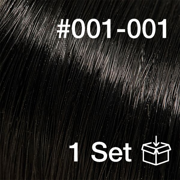 "Clip-In Extensions Set #001-001 ""Ebony"""